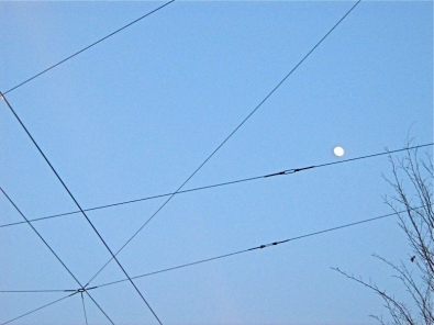 lune fils.JPG