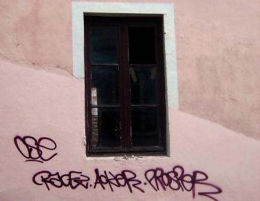 fen mur rose w.jpg