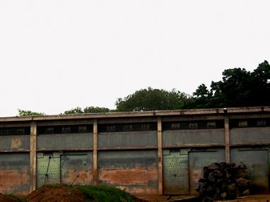 la-maison-des-elephants-3.jpg