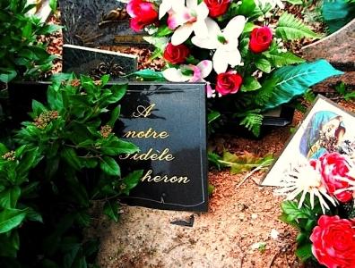 la mort du heronnCF9101.jpg